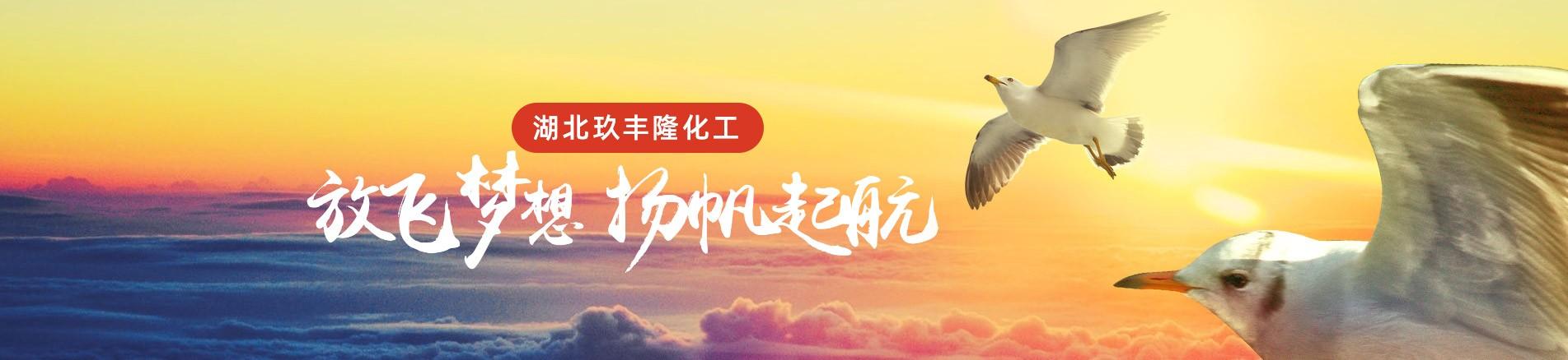 湖北玖丰隆化工有限公司