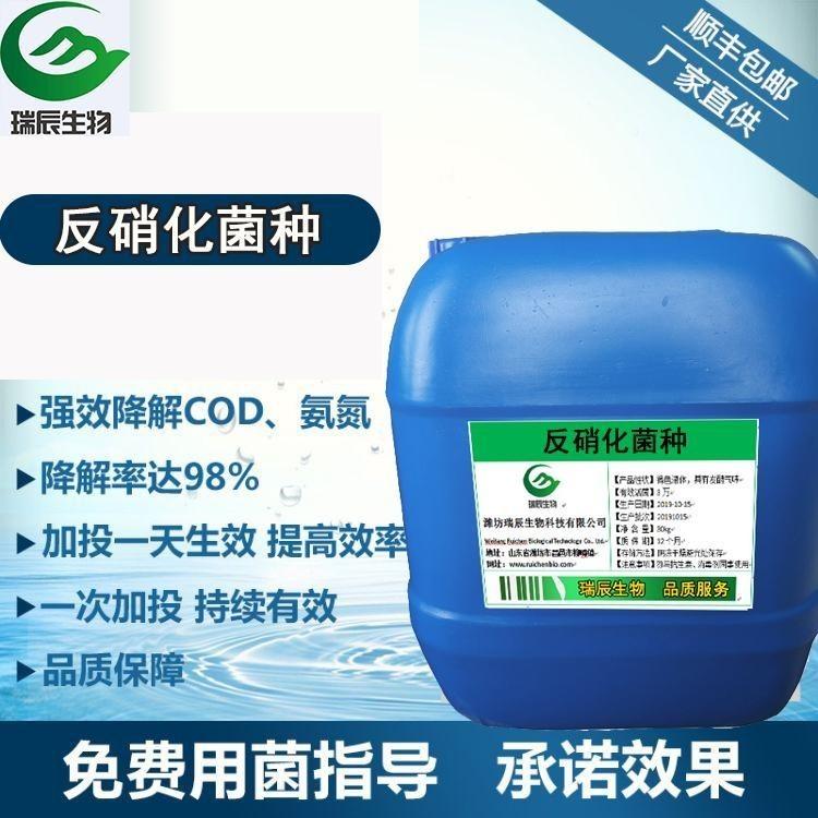 反硝化细菌生产厂家