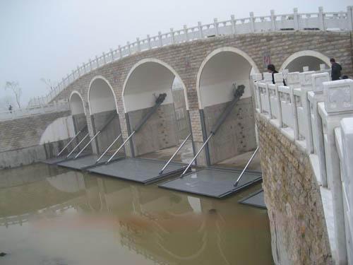 水利工程 闸门 钢制闸门 类型分析