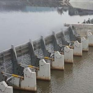 液压钢坝闸门  水利闸门分类与结构组成
