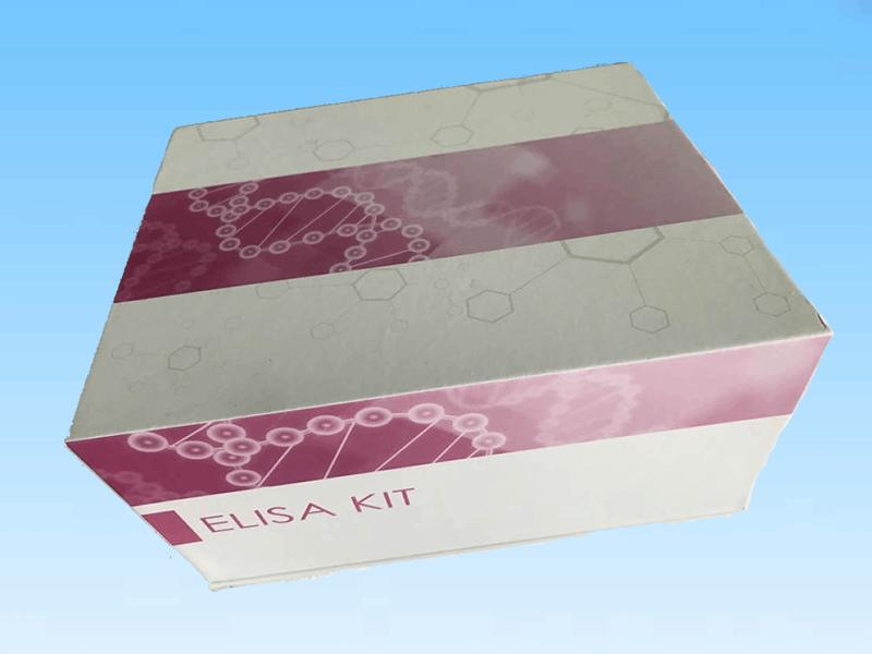 人S100钙结合蛋白BELISA试剂盒