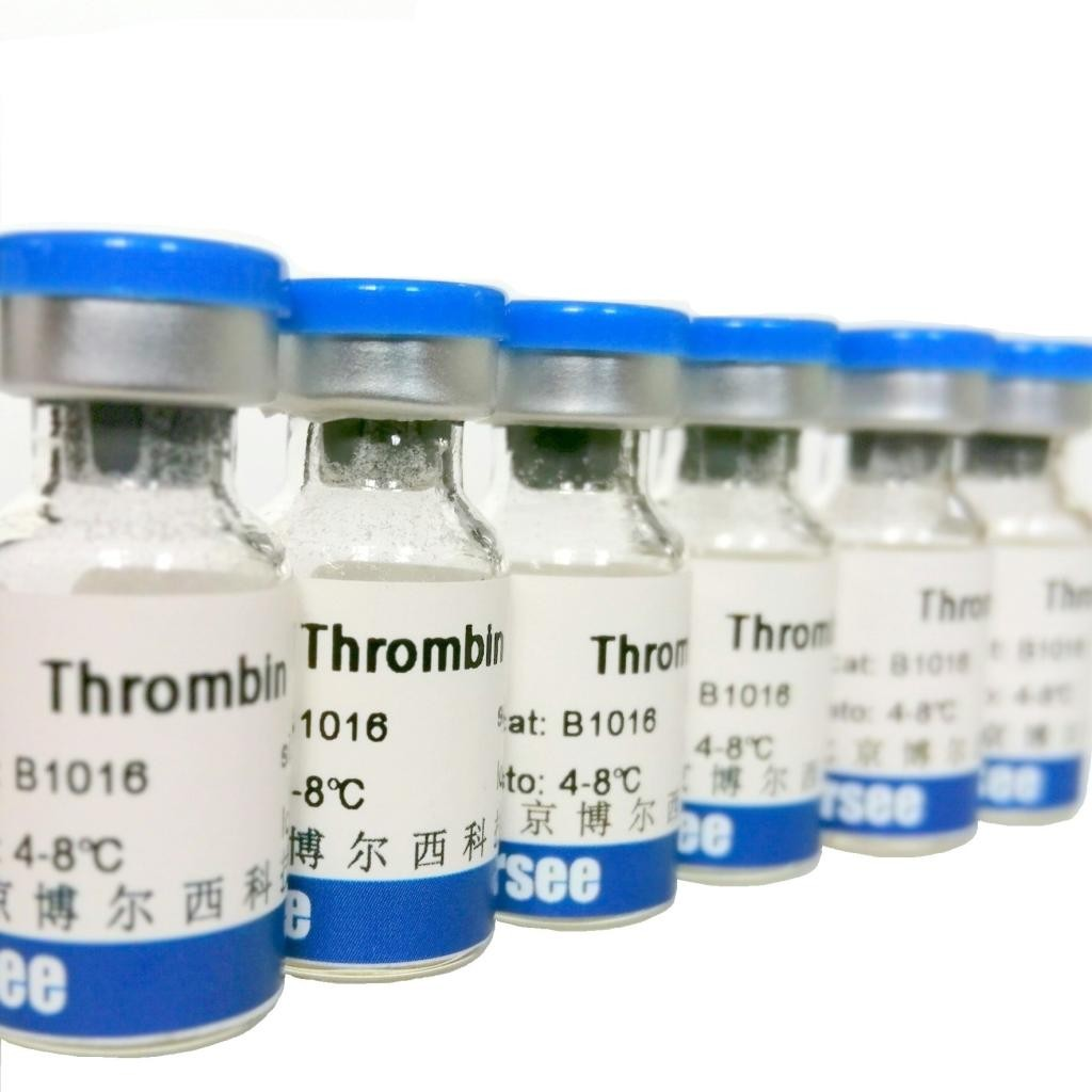 重组人胰岛素(rh-INS)细胞培养用 (高活性)