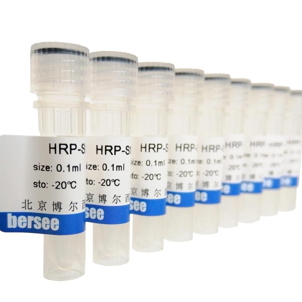 羊抗鼠IgG-HRP(辣根过氧化物酶标记二抗)