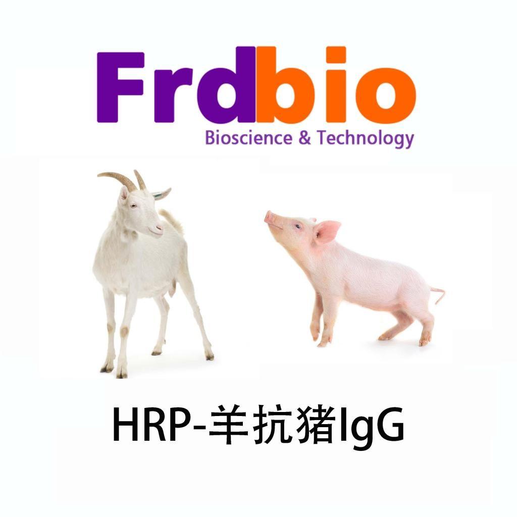 武汉羊抗猪HRP供应