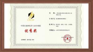 中国石油和化学工业专利奖