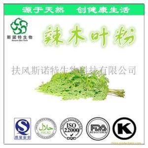 台湾辣木叶粉 辣木叶提取物 辣木叶提取粉 厂家现货
