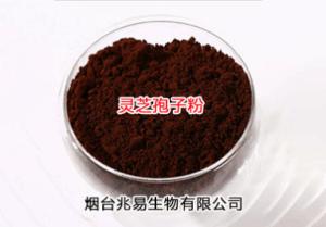 灵芝孢子粉提取物产品直销