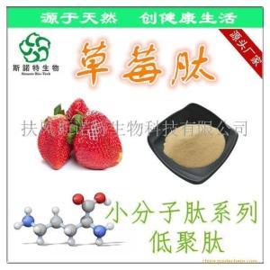 草莓肽粉 草莓小分子肽 厂家一站式供应