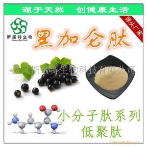 黑加仑肽粉 黑加仑小分子肽 黑加仑提取物 现货供应