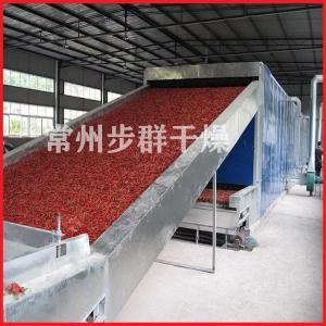 DWC系列脱水蔬菜带式干燥机 产品图片