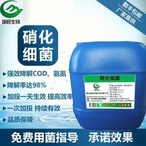 硝化细菌 产品图片