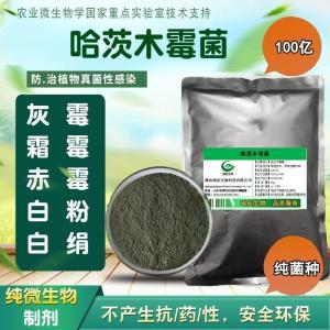 哈茨木霉 产品图片