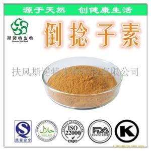 a-倒捻子素40% 山竹果皮提取物 倒捻子素粉 植物提取厂家