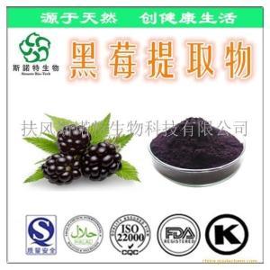 黑莓提取物速溶粉 黑莓提取物厂家 批发价格