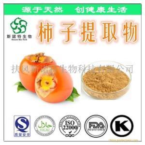 柿子提取物速溶粉 柿子提取物厂家 批发价格