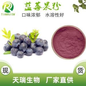 蓝莓果粉 厂家直供 速溶蓝莓粉