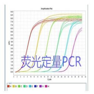 猪源性成分探针法PCR荧光定量检测试剂盒步骤 产品图片