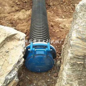 PMY型DN500出水口拍门 树脂玻璃钢拍门式止回阀 市政涵管排水单向阀