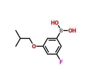3-氟-5-异丁氧基苯硼酸 CAS:850589-57-0   现货