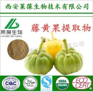 藤黄果提取物,羟基柠檬酸,60%羟基柠檬酸,藤黄果HCA,藤黄果粉