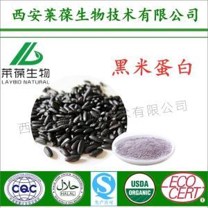 黑米蛋白,60%黑米蛋白,黑米植物蛋白