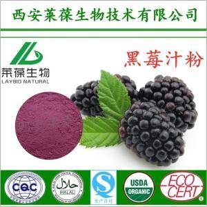 黑莓粉,黑莓汁粉,黑莓果粉,黑莓粉厂家