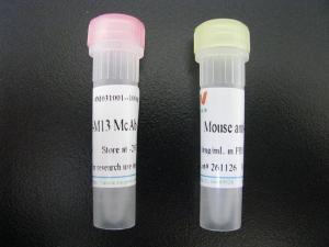 甲基化CpG结合蛋白2抗体的生物素化标记实验要点
