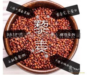 藜麦提取物 厂家直销10:1 藜麦浓缩粉 藜麦粉