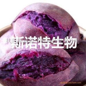 富硒紫薯粉 紫薯熟粉 紫薯奶茶粉 固体饮料原料