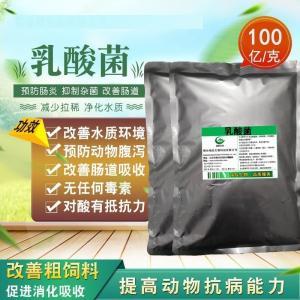 乳酸菌 产品图片