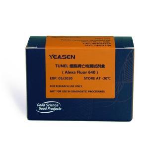 TUNEL细胞凋亡检测试剂盒(Alexa Fluor 640)  40308ES