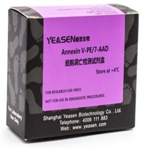 Annexin V-PE/7-AAD细胞凋亡检测试剂盒 40310ES