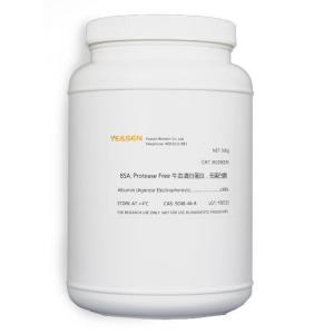 Bovine Serum Albumin(BSA), Protease Free牛血清白蛋白,无蛋白酶 36105