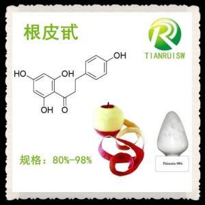 根皮甙 苹果皮提取物 多规格根皮苷Phlorizin85%