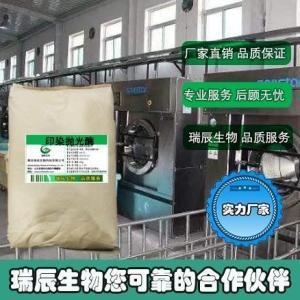 抛光酶 产品图片
