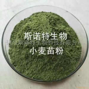 有机小麦草粉 小麦草汁粉 小麦草提取物粉