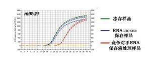 人血管生长素(ANG)ELISA检测试剂盒厂家 产品图片