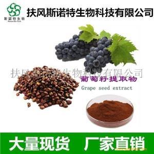 葡萄籽提取物(原花青素OPC) 95%含量