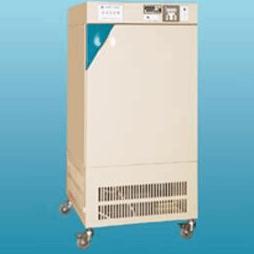程控人工气候箱 RQH-450
