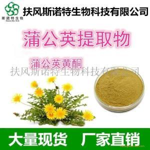 蒲公英黄酮4%类黄酮生产厂家 标准含量