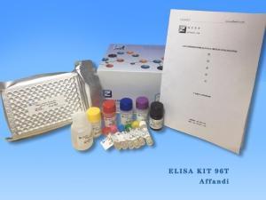 小鼠β干扰素(IFN-β/IFNB)ELISA试剂盒样本产品图片