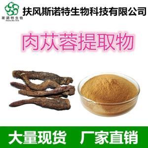 松果菊苷/紫锥菊甙 肉苁蓉提取物