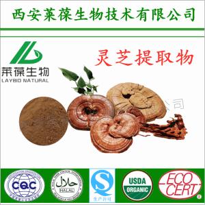 天然灵芝提取物 灵芝粉 有机菌类产品 SC厂家供应