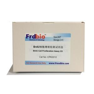 BrdU细胞增殖检测试剂盒