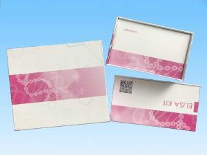 人D二聚体ELISA试剂盒 产品图片