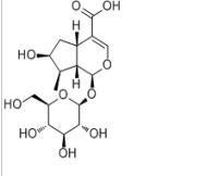 马钱苷酸22255-40-9 产品图片