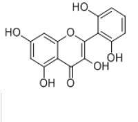 粘毛黄芩素 I92519-95-4 产品图片