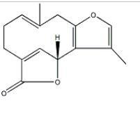 异乌药内酯957-66-4 产品图片