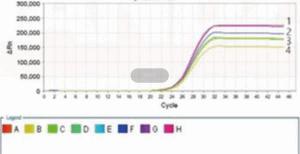 禽流感通用/H5亚型(AIV-U/AIV-H5)核酸检测试剂盒 特价 产品图片