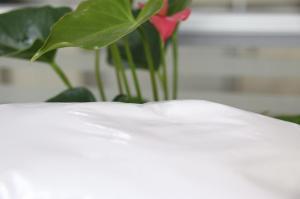 羧甲基纤维素钠原料辅料,9004-32-4,CMC-Na,纤维素中的广泛产品